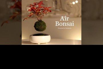 air-bonsai-el-primer-bonsai-flotante-con-levitacion-magnetica