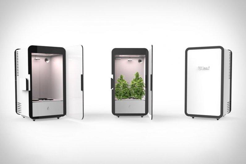 sistema-de-cultivo-automatico-para-hojas-de-cannabis-leaf